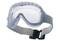 Cleanroom Goggles