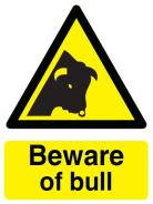Beware of Bull Sign