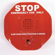 Extinguisher Anti-Theft Device